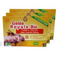 Gelée Royale Bio Action Automne